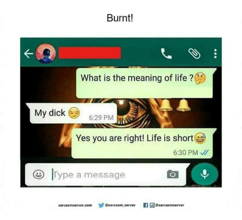 Life, Dick, and Meaning: Burnt!  What is the meaning of life?  My dick 6:29 PM  Yes you are right! Life is short  6:30 PM  Type a messag  sarcasmserver.comゾ  sarcasm server  gesarcasmserver