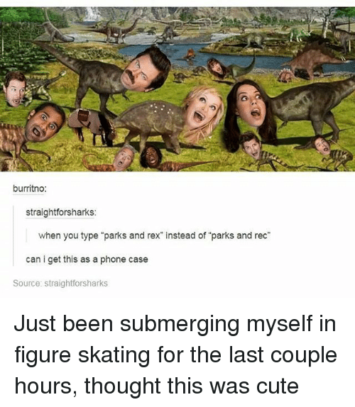 "Memes, Skate, and 🤖: burritno:  straightforsharks:  when you type ""parks and rex"" instead of ""parks and rec""  can i get this as a phone case  Source: straightforsharks Just been submerging myself in figure skating for the last couple hours, thought this was cute"