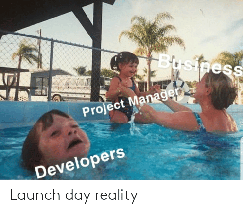 Business: Business  Project Managen  Developers Launch day reality