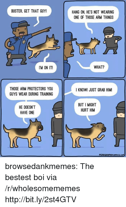 Tumblr, Blog, and Http: BUSTER, GET THAT GUY!  HANG ON, HE'S NOT WEARING  ONE OF THOSE ARM THINGS  IM ON IT!  WHAT?  THOSE ARM PROTECTORS YOU  GUYS WEAR DURING TRAINING  I KNOW! JUST GRAB HIM  HE DOESN'T  HAVE ONE  BUT I MIGHT  HURT HIM browsedankmemes:  The bestest boi via /r/wholesomememes http://bit.ly/2st4GTV