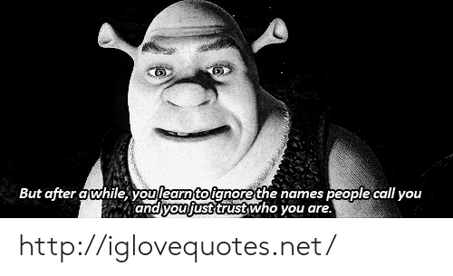 Yo, Http, and Net: But after awhile yo  the names people call you  and vouljust trustwho you are. http://iglovequotes.net/