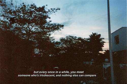 Nothing Else: but every once in a while, you meet  someone who's irisdescent, and nothing else can compare