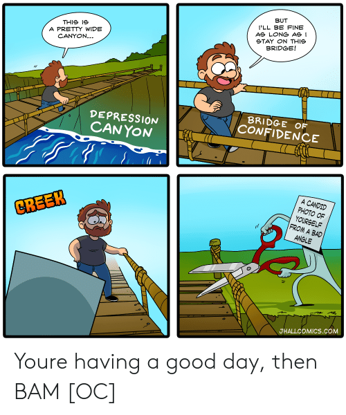 candid: BUT  I'LL BE FINE  AS LONG ASI  STAY ON THIe  BRIDGE!  THIS ie  A PRETTY WIDE  CANYON...  DEPRESSION  CANYON  BRIDGE OF  CONFIDENCE  A CANDID  PHOTO OF  YOURSELF  FROM A BAD  CREEK  ANGLE  JHALLCOMICS.COM Youre having a good day, then BAM [OC]