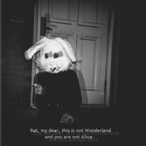 Alice, Wonderland, and You: But, my dear, this is not Wonderland  and you are not Alice.  and you are not Alice
