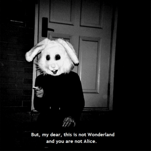my dear: But, my dear, this is not Wonderland  and you are not Alice.