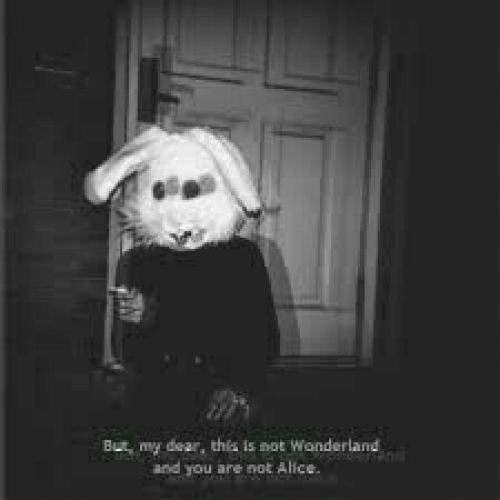 my dear: But my dear, this is not Wonderland  and you are not Alice