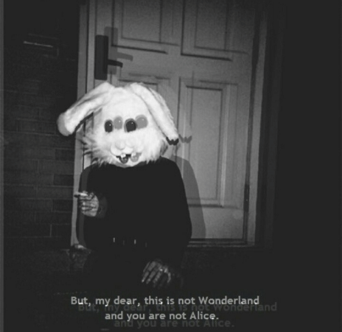my dear: But, my dear, this is not Wonderland  nd  and you are not Alice.  and you are hot A
