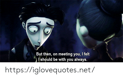 Net, You, and Href: But then, on meeting you, I felt  should be with you always. https://iglovequotes.net/