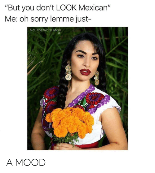 "Mood, Sorry, and The Worst: ""But you don't LOOK Mexican""  Me: oh sorry lemme just-  Not The Worst Mom A MOOD"