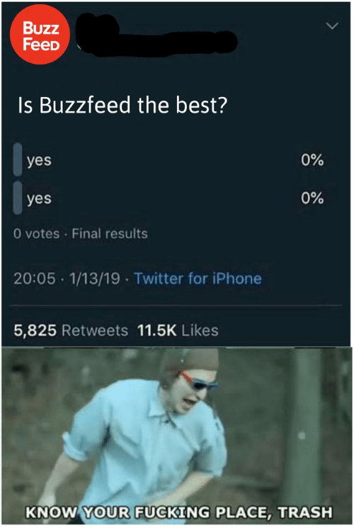 Iphone 5: Buzz  FeeD  Is Buzzfeed the best?  0%  yes  0%  yes  O votes Final results  20:05 1/13/19 Twitter for iPhone  5,825 Retweets 11.5K Likes  KNOW YOUR FUCKING PLACE, TRASH