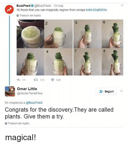 Memes, Buzzfeed, and 🤖: BuzzFeed @BuzzFeed 13 may.  16 foods that you can magically regrow from scraps bztd.it/2q82030  ⑤ Traducir del inglés  2  6  3  4  7  8  わ11 t3133 648  Omar Little  @HectorTieneFlow  , seguir  v  En respuesta a @BuzzFeed  Congrats for the discovery.They are called  plants. Give them a try.  Traducir del ingles magical!