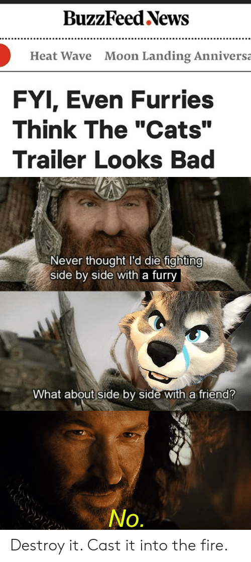 "fyi: BuzzFeed News  Moon Landing Anniversa  Heat Wave  FYI, Even Furries  Think The ""Cats""  Trailer Looks Bad  Never thought I'd die fighting  side by side with a furry  What about side by side with a friend?  No. Destroy it. Cast it into the fire."