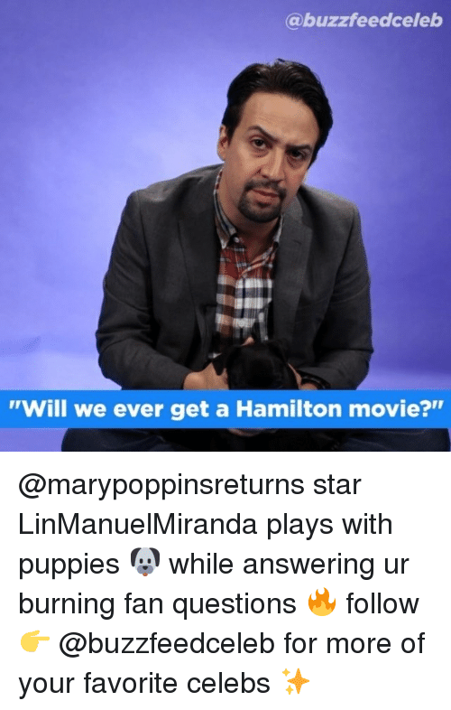 """answering: @buzzfeedceleb  """"Will we ever get a Hamilton movie?"""" @marypoppinsreturns star LinManuelMiranda plays with puppies 🐶 while answering ur burning fan questions 🔥 follow 👉 @buzzfeedceleb for more of your favorite celebs ✨"""