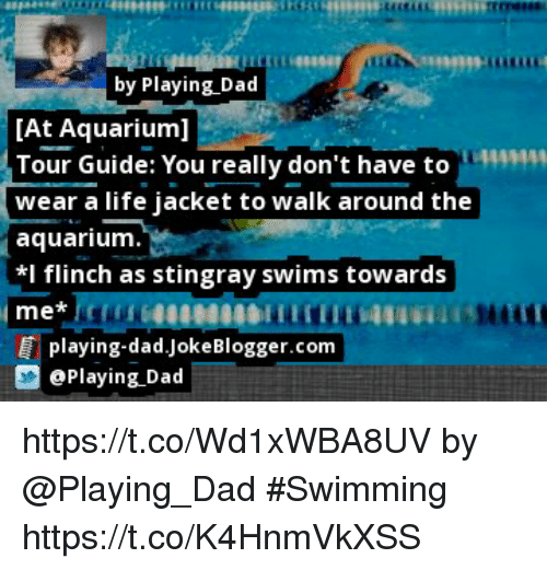 Dad, Life, and Memes: by Playing Dad  [At Aquarium]  Tour Guide: You really don't have to  wear a life jacket to walk around the  aquarium.  *I flinch as stingray swims towards  444  playing-dad.JokeBlogger.com  ePlaying Dad https://t.co/Wd1xWBA8UV by @Playing_Dad #Swimming https://t.co/K4HnmVkXSS