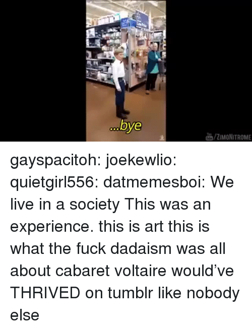 Tumblr, Blog, and Fuck: bye  /ZIMONITROME gayspacitoh: joekewlio:  quietgirl556:  datmemesboi: We live in a society    This was an experience.   this is art this is what the fuck dadaism was all about cabaret voltaire would've THRIVED on tumblr like nobody else
