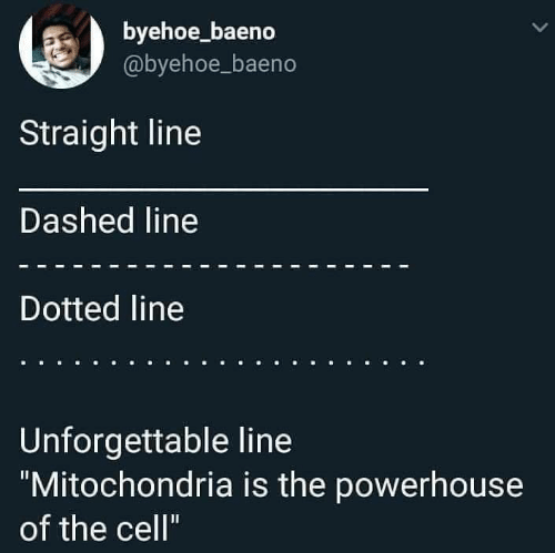 "Memes, Mitochondria, and Mitochondria Is the Powerhouse of the Cell: byehoe_baeno  @byehoe_baeno  Straight line  Dashed line  Dotted line  Unforgettable line  ""Mitochondria is the powerhouse  of the cell"""