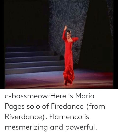 Tumblr, Blog, and Powerful: c-bassmeow:Here is Maria Pages solo of Firedance (from Riverdance). Flamenco is mesmerizing and powerful.