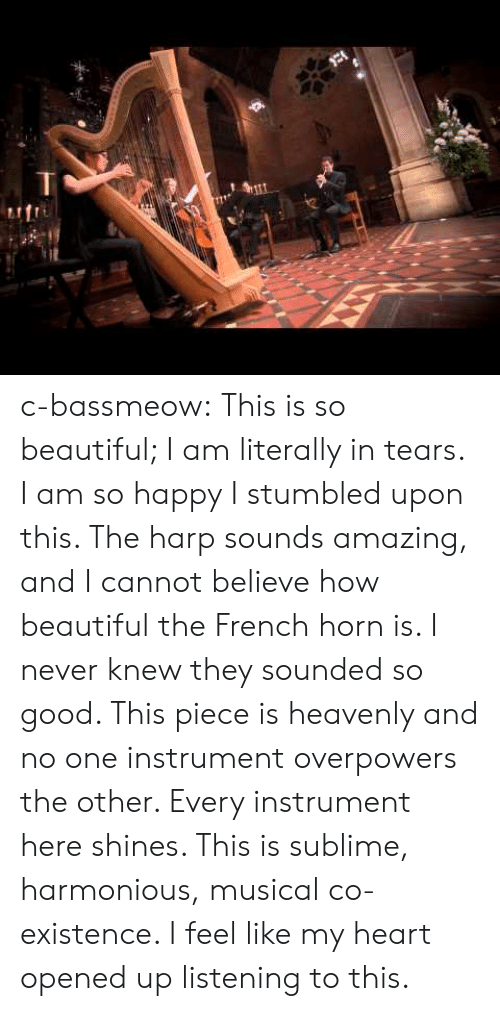 heavenly: c-bassmeow:  This is so beautiful; I am literally in tears. I am so happy I stumbled upon this. The harp sounds amazing, and I cannot believe how beautiful the French horn is. I never knew they sounded so good. This piece is heavenly and no one instrument overpowers the other. Every instrument here shines. This is sublime, harmonious, musical co-existence. I feel like my heart opened up listening to this.