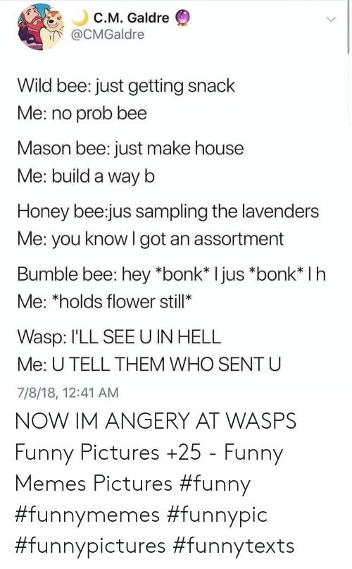 Funny, Memes, and Flower: C.M. Galdre  @CMGaldre  Wild bee: just getting snack  Me: no prob bee  Mason bee: just make house  Me: build a way b  Honey bee:jus sampling the lavenders  Me: you know I got an assortment  Bumble bee: hey *bonk* Ijus *bonk* I h  Me: *holds flower still*  Wasp: I'LL SEE U IN HELL  Me: U TELL THEM WHO SENT U  7/8/18, 12:41 AM NOW IM ANGERY AT WASPS Funny Pictures +25 - Funny Memes Pictures  #funny #funnymemes #funnypic #funnypictures #funnytexts