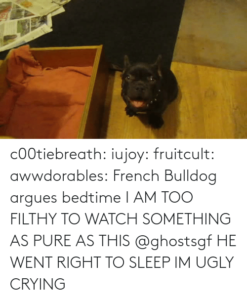 Ugly: c00tiebreath:  iujoy:   fruitcult:  awwdorables:  French Bulldog argues bedtime  I AM TOO FILTHY TO WATCH SOMETHING AS PURE AS THIS   @ghostsgf   HE WENT RIGHT TO SLEEP IM UGLY CRYING