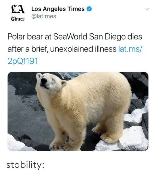 SeaWorld, Tumblr, and Bear: CA  Los Angeles Times o  @latimes  Gimes  Polar bear at SeaWorld San Diego dies  after a brief, unexplained illness lat.ms  2pQf191 stability: