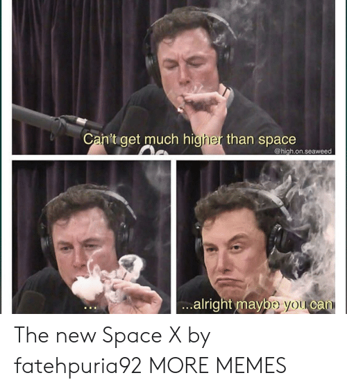 Dank, Memes, and Target: Ca  n't get much higher than space  @high.on.seaweed  alri  ght maybe you can The new Space X by fatehpuria92 MORE MEMES