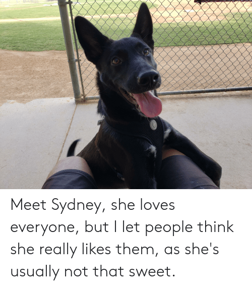 Sydney, She, and Think: CALIE  NANDPEOP Meet Sydney, she loves everyone, but I let people think she really likes them, as she's usually not that sweet.