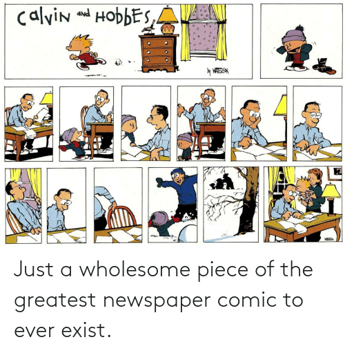 Wholesome, Calvin and Hobbes, and Comic: calvin and HobbES,A  PNP  y WATERSN Just a wholesome piece of the greatest newspaper comic to ever exist.