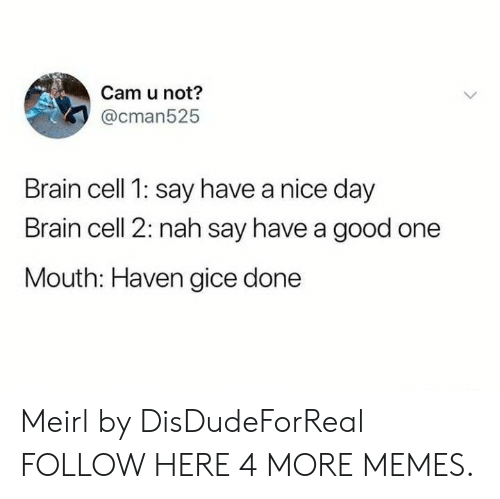 Dank, Memes, and Target: Cam u not?  @cman525  Brain cell 1: say have a nice day  Brain cell 2: nah say have a good one  Mouth: Haven gice done Meirl by DisDudeForReal FOLLOW HERE 4 MORE MEMES.