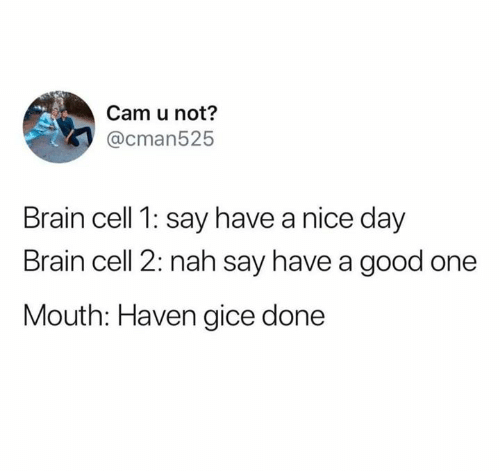 Memes, Brain, and Good: Cam u not?  @cman525  Brain cell 1: say have a nice day  Brain cell 2: nah say have a good one  Mouth: Haven gice done