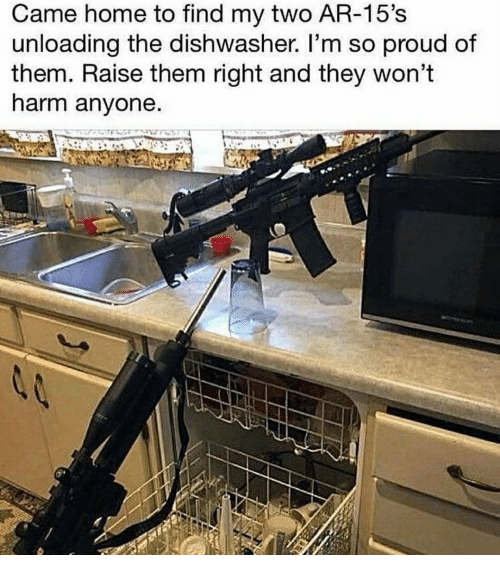 Home, Proud, and Them: Came home to find my two AR-15's  unloading the dishwasher. l'm so proud of  them. Raise them right and they won't  harm anyone