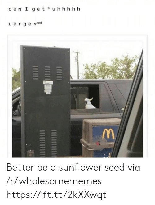 Can, Sunflower, and Via: caN I get uhhhhh  Large seed Better be a sunflower seed via /r/wholesomememes https://ift.tt/2kXXwqt