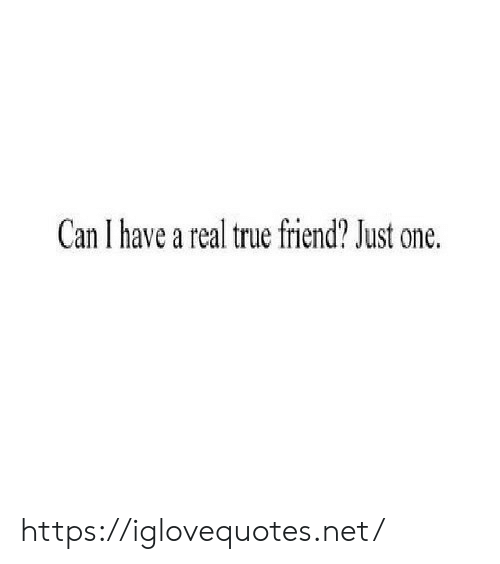 True, Net, and Can: Can I have a real true friend? Just one. https://iglovequotes.net/