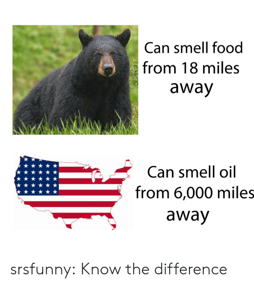 Food, Smell, and Tumblr: Can smell food  from 18 miles  away  Can smell oil  from 6,000 miles  away srsfunny:  Know the difference