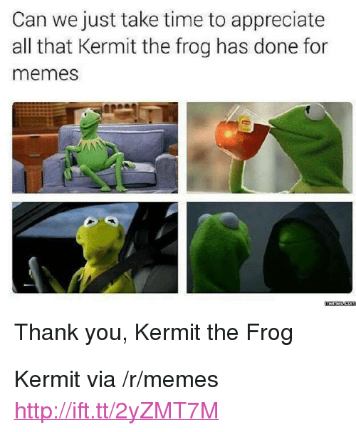 """Kermit the Frog, Memes, and Thank You: Can we just take time to appreciate  all that Kermit the frog has done for  memes  Thank you, Kermit the Frog <p>Kermit via /r/memes <a href=""""http://ift.tt/2yZMT7M"""">http://ift.tt/2yZMT7M</a></p>"""