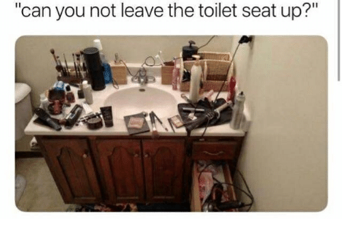 "Memes, 🤖, and Can: ""can you not leave the toilet seat up?"""