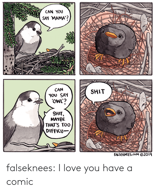 owl: CAN YOU  SAY 'MAMA'?  CAN  YOU SAY  'OWL'?  SHIT  SHIT,  MAYBE  THAT'S TOO  DIFFICU-  FALSEKNEES.cOM ©2019 falseknees:  I love you have a comic