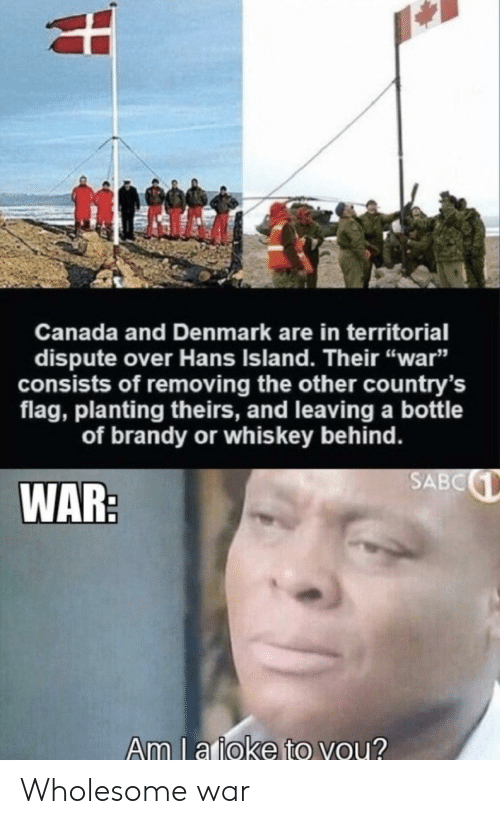 """Theirs: Canada and Denmark are in territorial  dispute over Hans Island. Their """"war""""  sists of removing the other country's  flag, planting theirs, and leaving a bottle  of brandy or whis key behind.  SABC  WAR:  Am l a ioke to you? Wholesome war"""