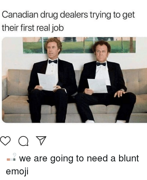 Emoji, Canadian, and Drug: Canadian drug dealers trying to get  their first real job 🚬 we are going to need a blunt emoji