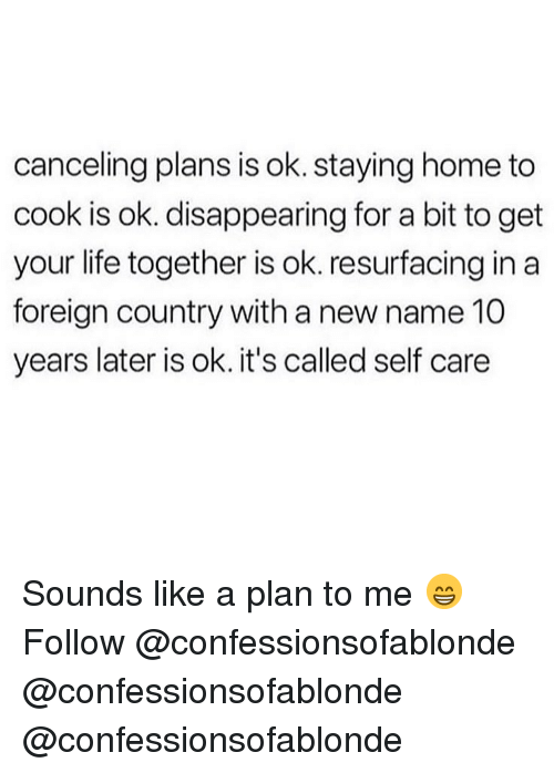 Life, Memes, and Home: canceling plans is ok. staying home to  cook is ok. disappearing for a bit to get  your life together is ok. resurfacing in a  foreign country with a new name 10  years later is ok. it's called self care Sounds like a plan to me 😁 Follow @confessionsofablonde @confessionsofablonde @confessionsofablonde