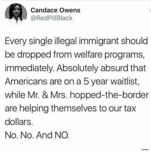 Memes, Absurd, and Single: Candace Owens  @RedPillBlack  Every single illegal immigrant should  be dropped from welfare programs  immediately. Absolutely absurd that  Americans are on a 5 year waitlist,  while Mr. & Mrs. hopped-the-border  are helping themselves to our tax  dollars  No. No. And NO