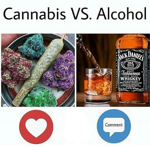 Memes, Alcohol, and Old: Cannabis VS. Alcohol  DAN  OLD TIN  .Ola  No.t  WHISKEY  ACK DANIEL DISTILLEXT  Comment