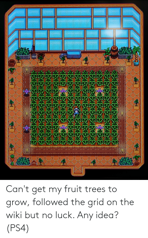 no luck: Can't get my fruit trees to grow, followed the grid on the wiki but no luck. Any idea? (PS4)