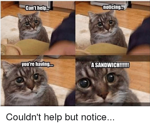 Noticably: Can't help  you're having.  noticing  A SANDWICH!!!!!! Couldn't help but notice...