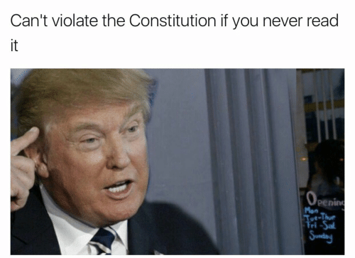 Constitution, Never, and You: Can't violate the Constitution if you never read  it  0  penin  ri