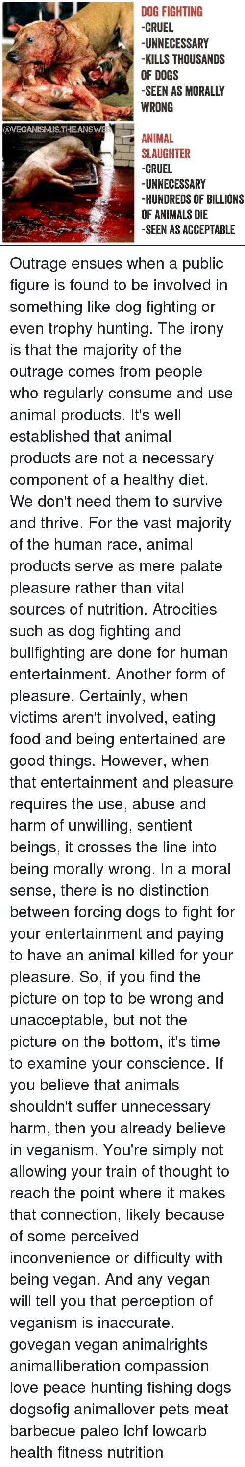 is hunting animals morally acceptable