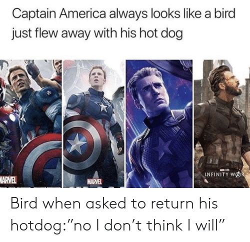 "Infinity: Captain America always looks like a bird  just flew away with his hot dog  INFINITY WOR  MARVEL  MARVEL Bird when asked to return his hotdog:""no I don't think I will"""