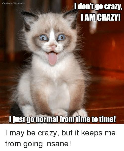 Going Insane: Caption by Kittyworks  I don't go crazy,  I AM CRAZY!  I justgo normal from time to time! I may be crazy, but it keeps me from going insane!