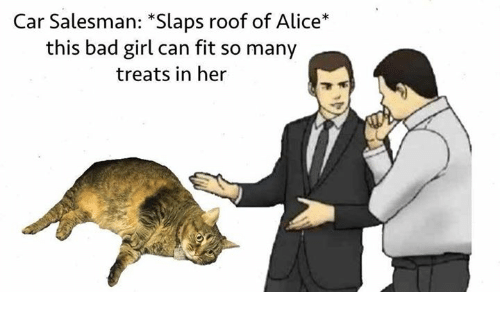 Bad, Girl, and Bad Girl: Car Salesman: *Slaps roof of Alice*  this bad girl can fit so many  treats in her