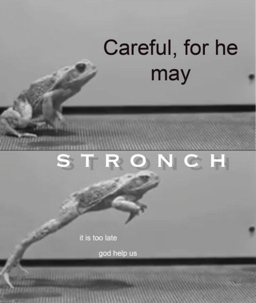 may: Careful, for he  may  STRONCH  it is too late  god help us